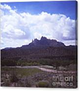814 Sl The Silver  Fence  Canvas Print