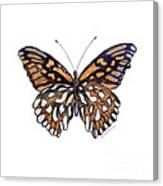 9 Mexican Silver Spot Butterfly Canvas Print