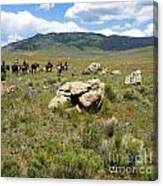 Rock Along The Trail Canvas Print