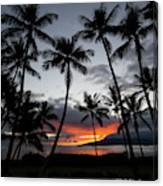 Silhouette Of Palm Trees At Dusk Canvas Print