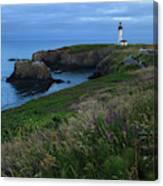 Usa, Oregon, Newport, Yaquina Head Canvas Print