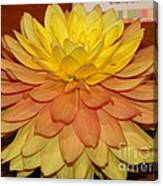 #928 D801 Dahlia Orange Yellow Pink Green Canvas Print