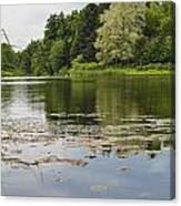 Pond With Trees  Canvas Print
