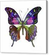 98 Graphium Weiskei Butterfly Canvas Print