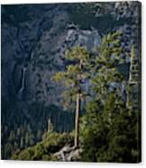 A Backpacker Hikes Down A Trail Canvas Print