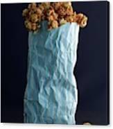 A Bag Of Popcorn Canvas Print