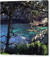A Beautiful Cove At Point Lobos Canvas Print