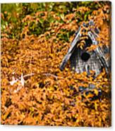 A Bird House Sits Empty In Fall Canvas Print