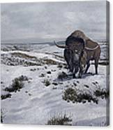 A Bison Latifrons In A Winter Landscape Canvas Print