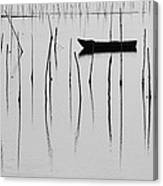 A Boat... In A Jungle Of Poles Canvas Print