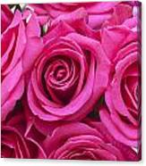 A Bouquet Of Pink Roses Canvas Print