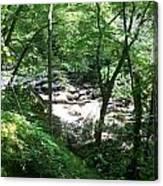 A Brook Between Canvas Print