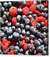 A Bunch Of Berries Canvas Print