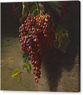 A Bunch Of Grapes Canvas Print