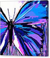 A Butterfly So Blue Canvas Print