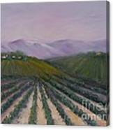 A California Morning Canvas Print
