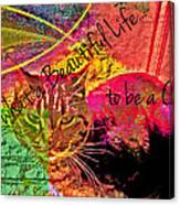 A Cat's Life Canvas Print