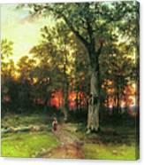 A Child Walks In A Forest Canvas Print