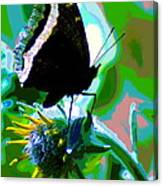 A Cosmic Butterfly Canvas Print