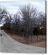 A Country Driveway Near The Brazos River Canvas Print