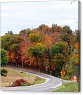 A Country Road In Autumn Canvas Print