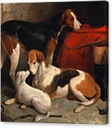 A Couple Of Foxhounds With A Terrier The Property Of Lord Henry Bentinck Canvas Print