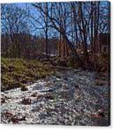 A Creek Runs Though It Canvas Print