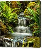 A Creek Runs Through Canvas Print