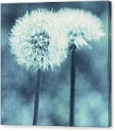 A Dandy In Blue Canvas Print