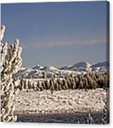 A Day Of Winter Canvas Print