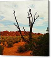 A Dead Tree Foreground A Maze Of Rocks Canvas Print