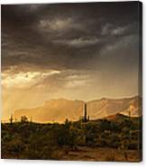 A Desert Monsoon Sunset  Canvas Print