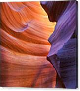 A Different Shade Canvas Print