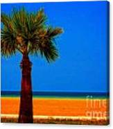 A Digitally Converted Painting Of A Lone Palm Tree At The Seaside Canvas Print