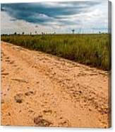 A Dirt Road In The Plains Canvas Print