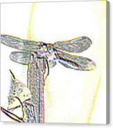 A Dragonfly In My Dreams Canvas Print