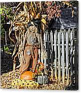 A Fall Scarecrow Display Canvas Print