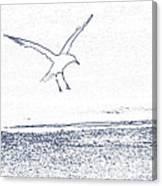 A Fine Flight Canvas Print
