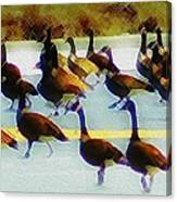 A Flock Of Geese Canvas Print