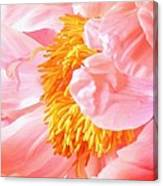 A Flower Effect Canvas Print