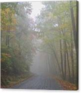 A Foggy Drive Canvas Print