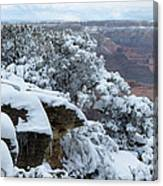 A Foot At The Canyon Canvas Print