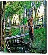 A Forgotten Delta Dock Canvas Print