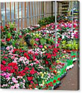 A French Flower Market Canvas Print
