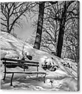 A Frigid Moment Canvas Print