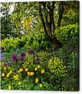 A Garden Of Color Canvas Print