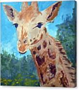 A Giraffe For Ori Canvas Print