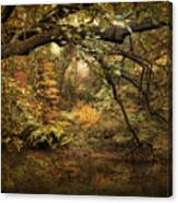 A Glimpse Of Autumn Canvas Print