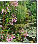 A Glimpse Of Monet's Pond At Giverny Canvas Print