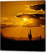 A Golden Southwest Sunset  Canvas Print